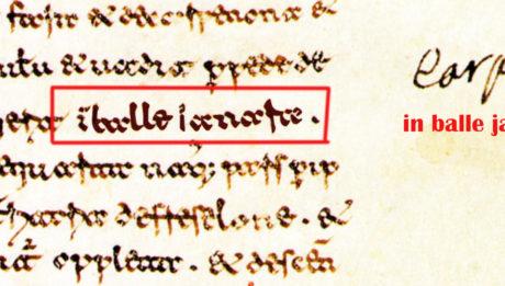 17) carpinoneBALLE IANARA